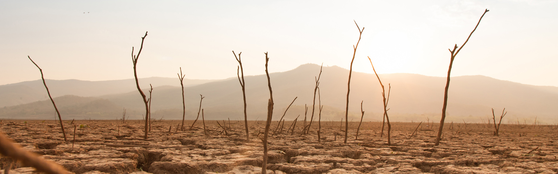 How will water shortages affect us?