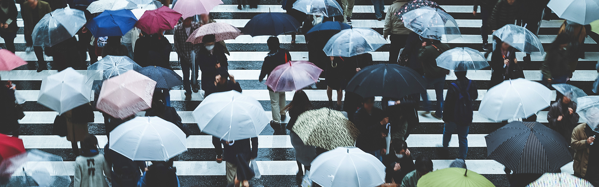 The importance of stormwater management